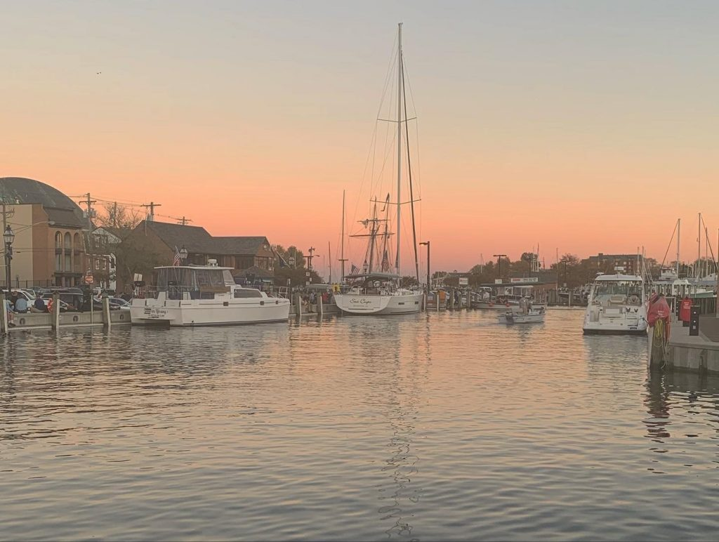 Pink and orange sunset on the water with various sailboats docked